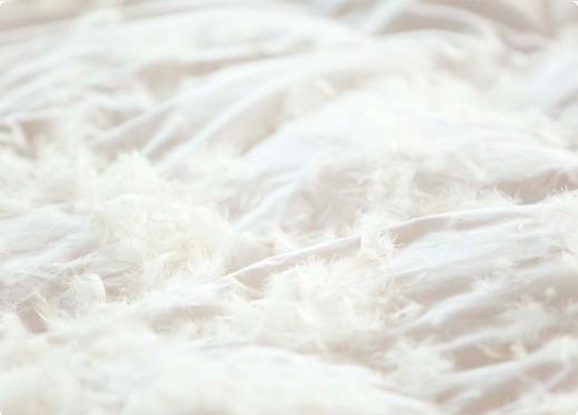 plumas cama